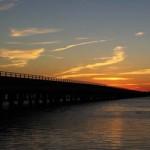 bridge_-1