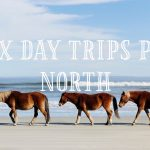 OBX Day Trips North from the Sea Ranch Resort