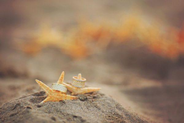 Outer Banks Wedding Planning Season at the Sea Ranch Resort, plan your outer banks wedding at the sea ranch