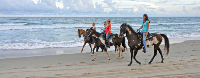 Equine Adventure